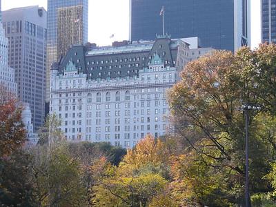 2009 New York City