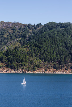 06 Marlborough Sounds