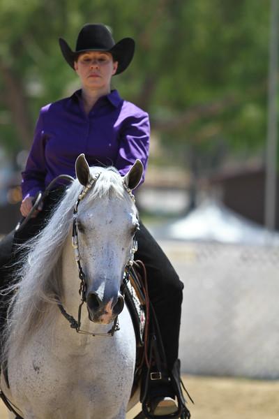 Arabian ATR Ranch Riding