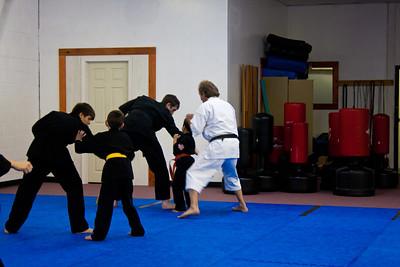 Kensho-Ryu Karate