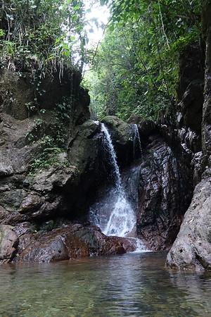 PANACAM