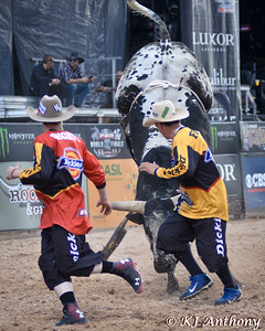 PBR 2015 Last Cowboy Standing Protect The Fallen