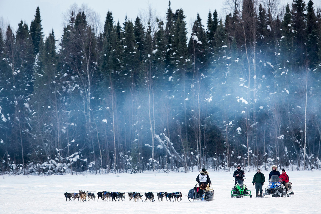 . Musher Matt Failor greets well-wishers along the trail after the re-start of the Iditarod dog sled race in Willow, Alaska March 3, 2013. From Willow, the race runs for almost 1000 miles as it crosses the state.   REUTERS/Nathaniel Wilder