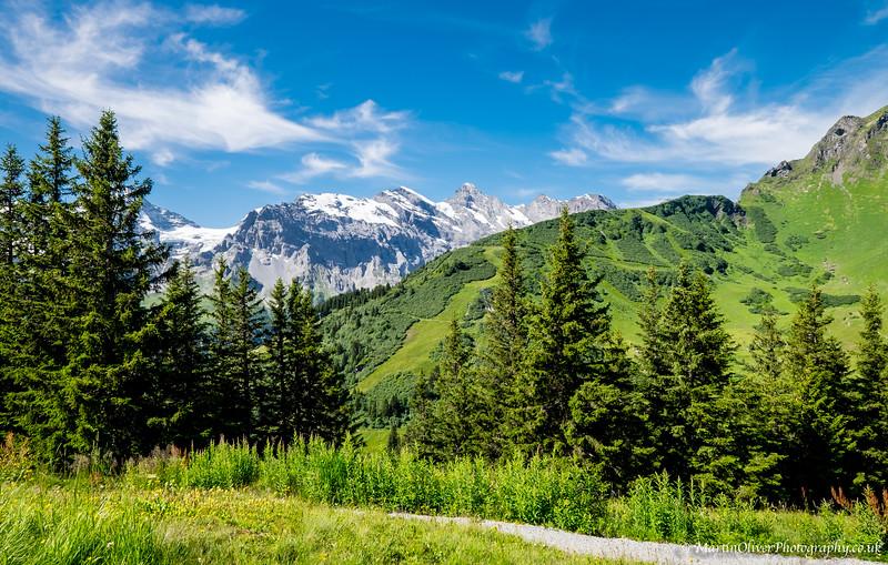 Grindelwald Bort