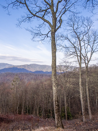 Great Smoky Mountains National Park - updated 10/30/2018
