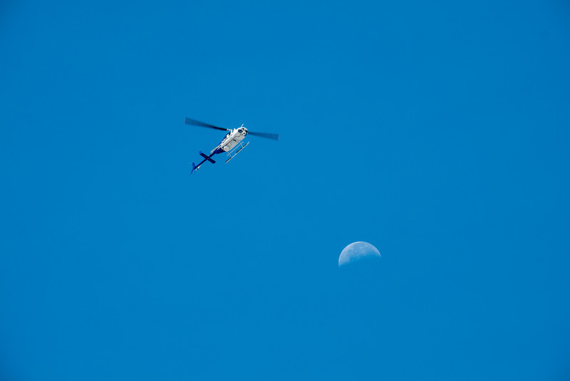 Chopper and Moon F6326-Redigera.jpg