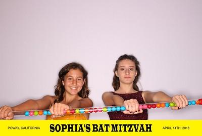 04.14 Sophia's Bat Mitzvah