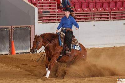 Thursday Novice Horse Set 1 1-10
