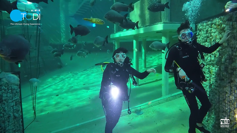 Nickelodeon.00_49_01_01.Still156.jpg