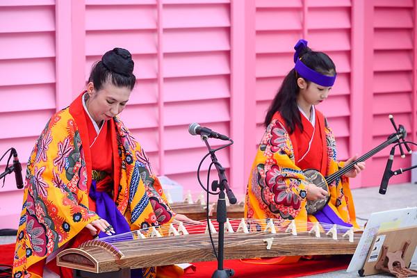 Cherry Blossom Festival Sakura 2019