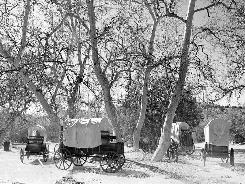Payson, Arizona wagon train