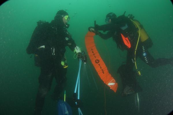 Plongée  Roscoff Gorgonnes 12-08-2011