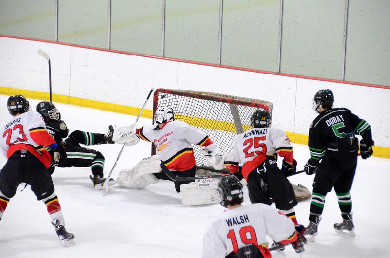 140111 Flames Hockey-113.JPG