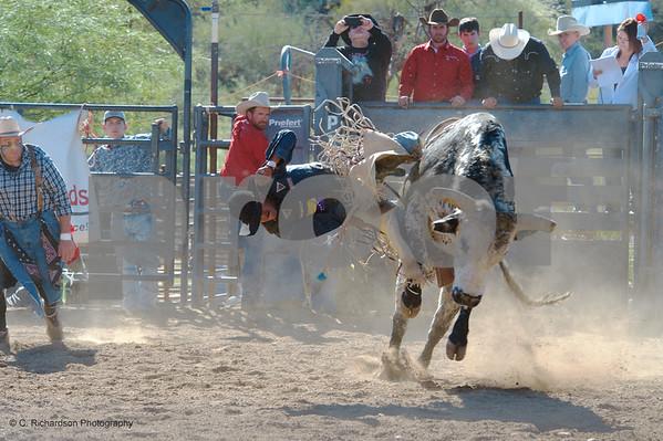 Day 1 Bull Riding 11-14-15