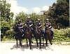IPD HOrse Patrol May 1983