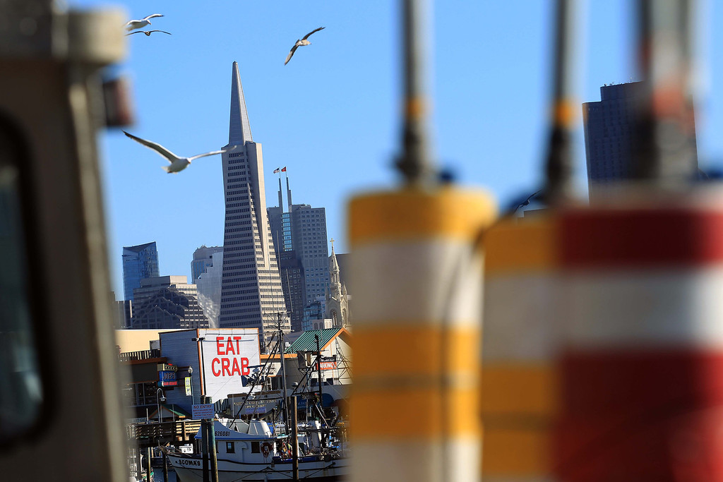 . View of the Transamerica Pyramid from herring boats at the San Francisco Community Fishing Association dock on Pier 45 in San Francisco, Calif., on Friday, Feb. 8, 2013.  (Jane Tyska/Staff)