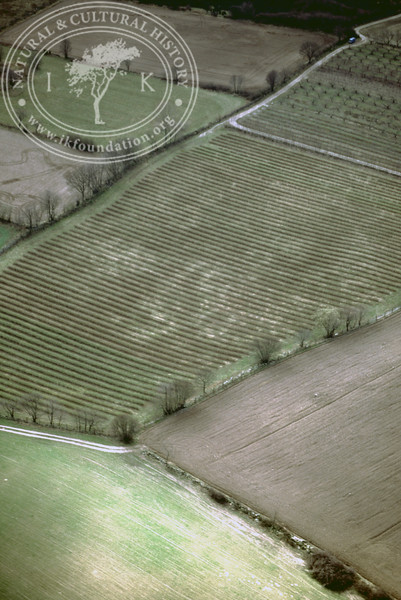Farmland west of Ravlunda church - with plantations, buildings and prehistoric remains (2 April, 1989). | LH.0516