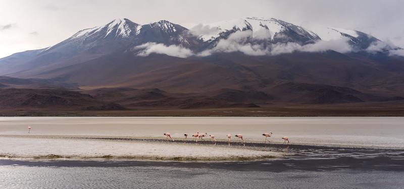 Altiplano Tour - Day 1
