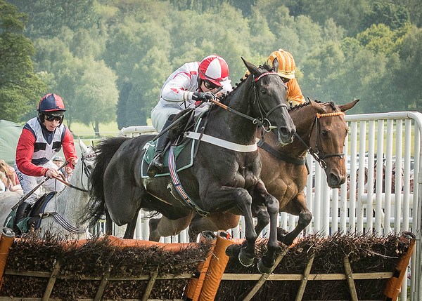 Uttoxeter Races - Sun 29 May 2016