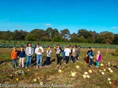 October 24 Pumpkins