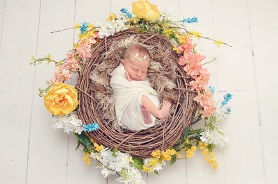 Newborns & Littles