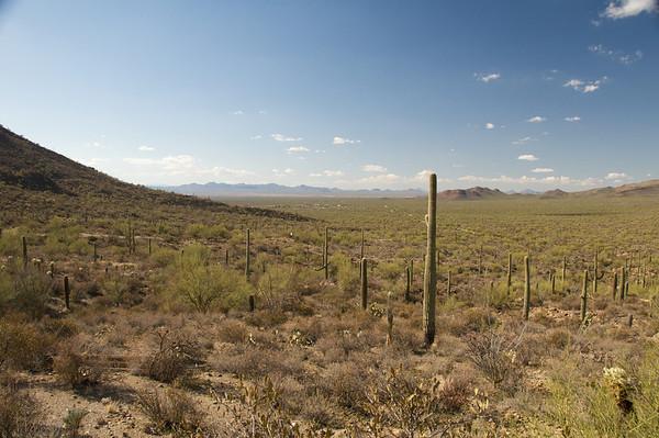 December 2009 - Arizona Trip