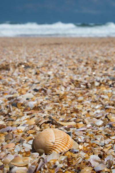 St Augustine Beach-4016.jpg