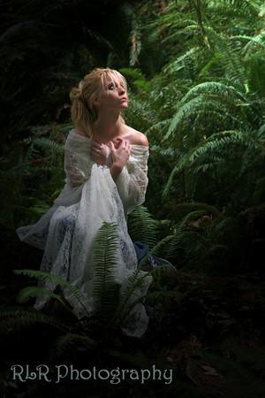 Krissy Redwoods