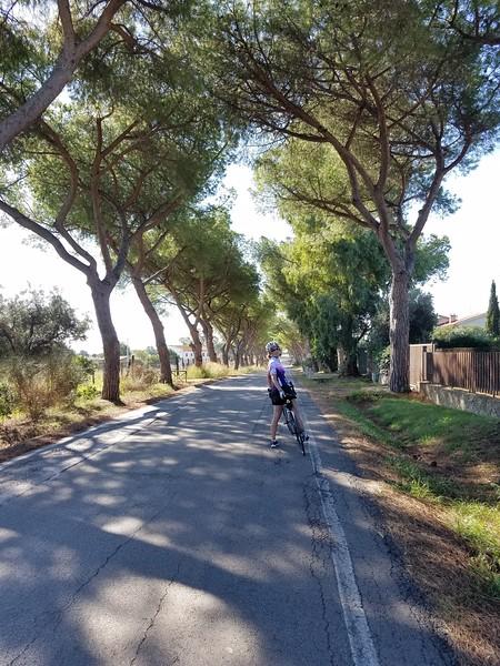 barb_on_bike.jpg