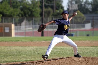 Baseball (Spring 2010)