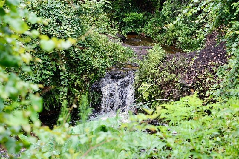 Waterfall 8.jpeg