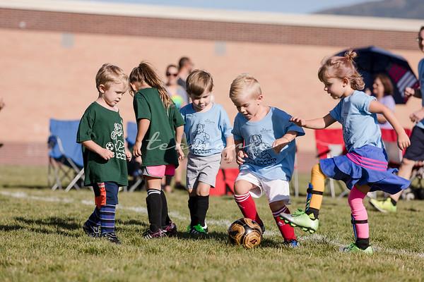 Springville Cub Soccer Fall 2020