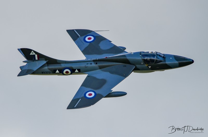 Hawker Hunter T7 'WV372 - R' (G-BXFI) at Shoreham Airshow 2014