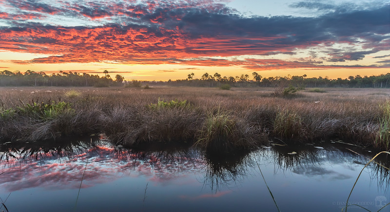 Sunrise at Merritt Island National Wildlife Refuge