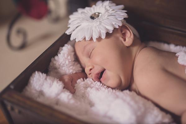 Newborn:  Given (Monroe, GA)