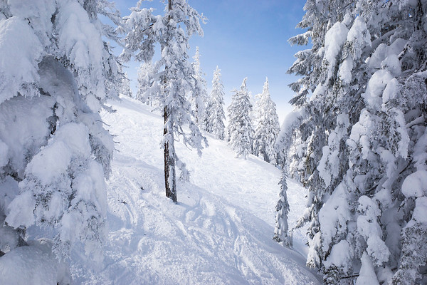 2021 Ski Trip