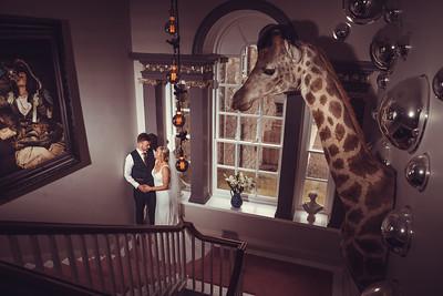 Wedding - Robinson