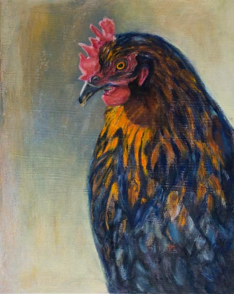 Cock001.jpg