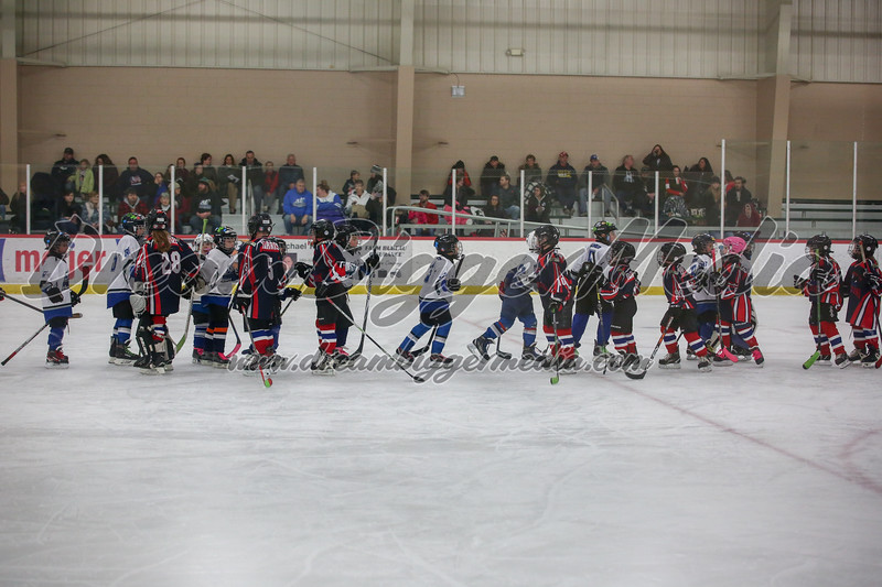 Blizzard Hockey 111719 7466.jpg