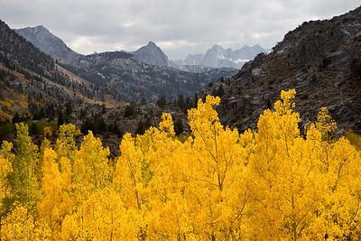 Eastern Sierra, Fall of 2008