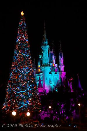 Walt Disney World Holidays 2005