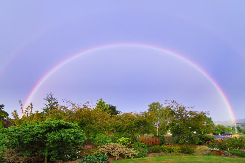 Rainbow250215-002.jpg