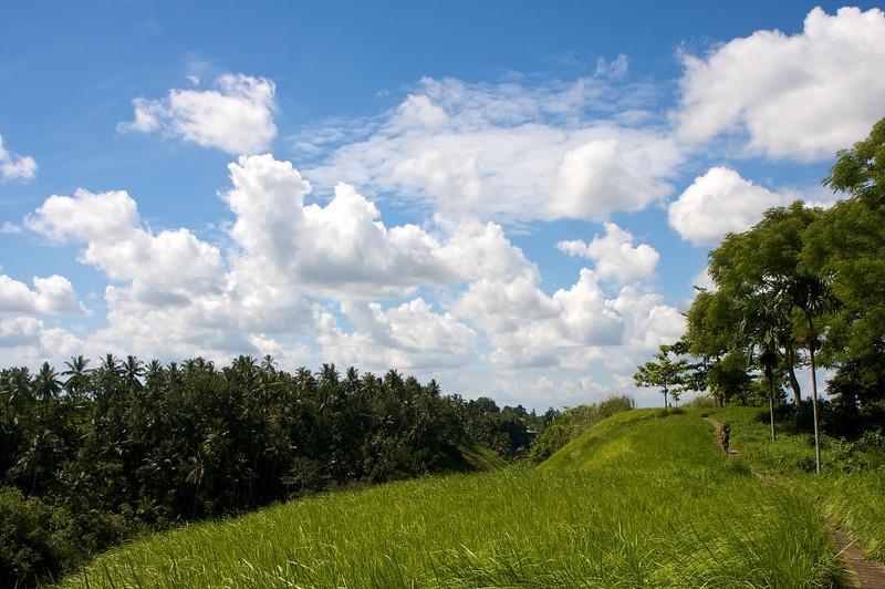 indonesia8.jpg