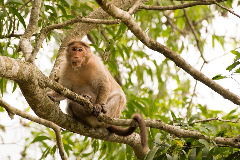 19-Sept Wildlife-7889.JPG