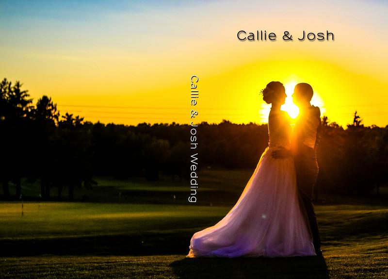 Callie & Josh 8x12 Sample Album