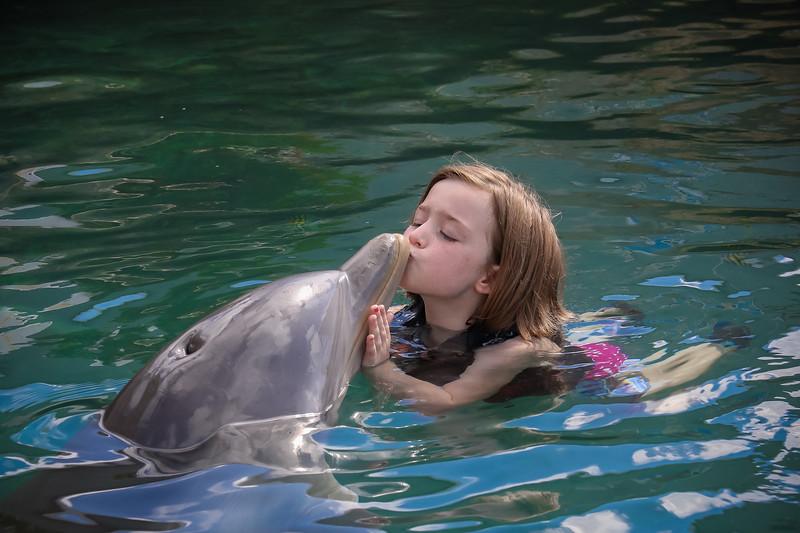 2019 August Dolphin Quest-29.jpg