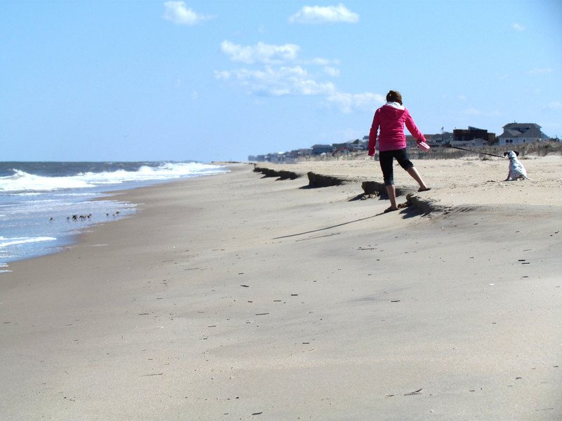 Dam Neck Beach (20).jpg