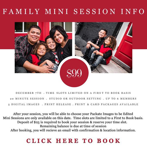 Family Mini Sessions INFO 2019.jpg