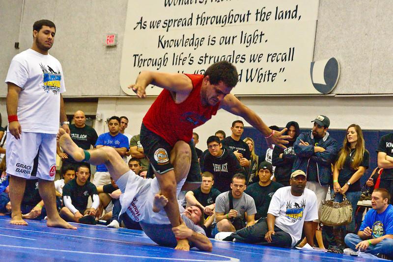 MMA_Houston_20090418_0670.jpg