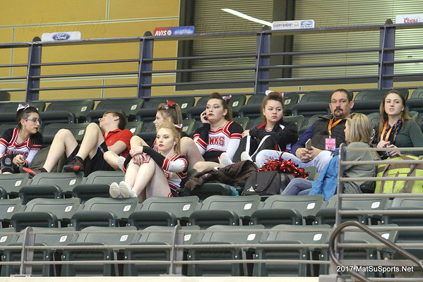 2017 State Cheer 3-22-2017
